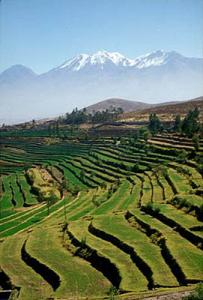 Colca Canyon Visit Packages